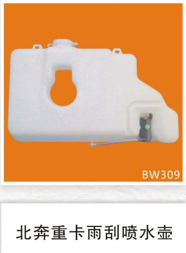 BW309